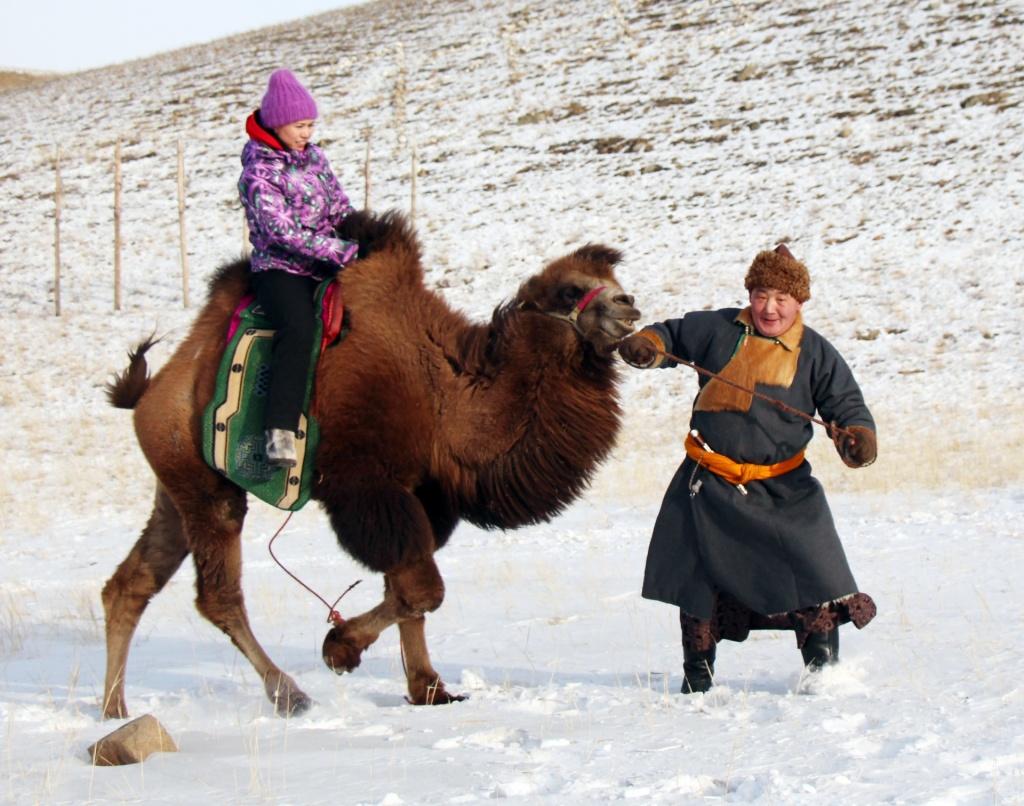 катание на верблюде.jpg